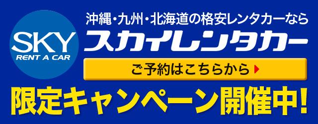 スカイレンタカー 限定キャンペーン開催中!